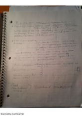 Economic Tools and Systems, class notes