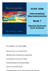 Lecture 5 - Classical Business Cycle Analysis