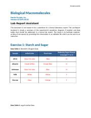 Biological_Macromolecules Report Assistant.docx