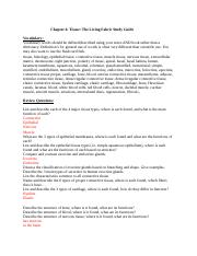 Chapter 4 Tissues The Fabric of Life Study Guide(1).docx