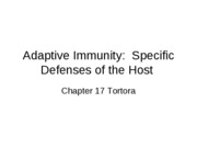 Adaptive Immunity-chapter 17 Tortora