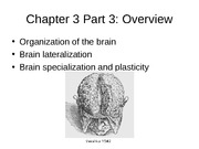 Ch3 Part 3 Biological Foundations (W12)