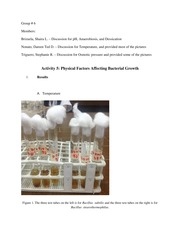 Physical Factors Affecting Bacterial Growth