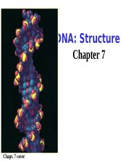 Chapter 7 DNA-Structure and Replication.ppt