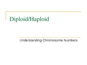 Diploid and Haploid