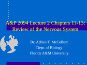 A&P2094Lecture2