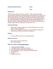 example 5 paragraph essay high school