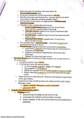 BIO212 chapter 14 part 2 nerves class notes