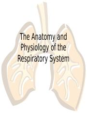 Week 12 respiratory system Students Copy