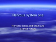 Nervous system one