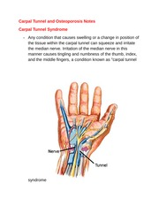 Carpal Tunnel and Osteoporosis Notes
