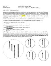 Biology gene pairs homework help
