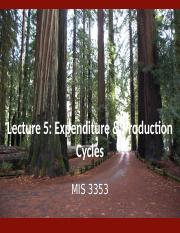 Lecture 5 - Expenditure & Production Cycles.pptx