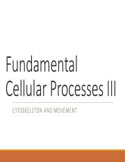 Membranes and Cells III - Cell-Cell-Communication -LectureNOTES