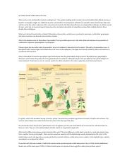 LECTURE 9 PLANT INTRO AND LIFE CYCLE.docx