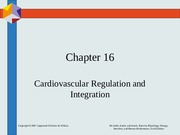 Chapter16 CV Regulation & Integration