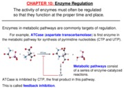 11-EnzymeRegulation (1)