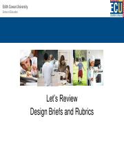 Design briefs and Rubrics -week 3, HEE 2313 and HEE 4216.pdf