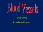 bloodvessels-2-110817034702-phpapp02 (2)