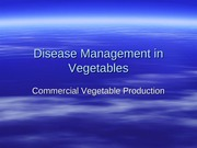 Disease Management in Vegetables