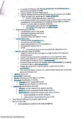 BIO212 chapter 12 nervous system part 2 class notes