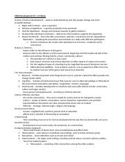 Ch. 1-4 Notes.docx