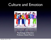 Emotion Lecture 13 2010 Culture and Emotion I