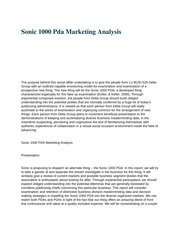 HS 108 (Sonic 1000 Pda Marketing Analysis)