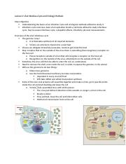 Lecture 2 Viral Infectious Cycle and Virology Methods