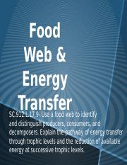 food web and energy transfer.pptx