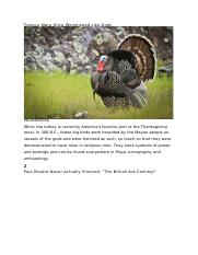 Turkeys Were Once Worshipped Like Gods.docx