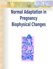 maternal normal adapatation pregnancy notes