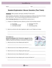 mouse genetics two traits Ashleigh Snyder Mouse Genetics (Two Traits).docx - Mouse Genetics ...