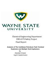 Safety Project Report .docx