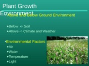 growth_environment (2)