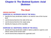 Axial Skeleton - Skull Additional Views