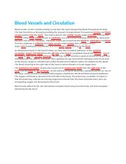 Laboratory Lecture Blood Vessels and Circulation Bluedoor.docx