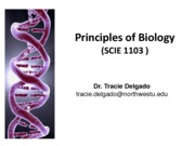 05- DNA, Gene Expression and Biotechnology