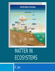 The-cycling-of-matter-in-ecosystems.pptx