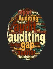 ACCTG 312 Week 1 The function of auditing.pptx