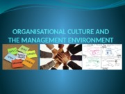 chapter-3--organizational-culture-2015(1)