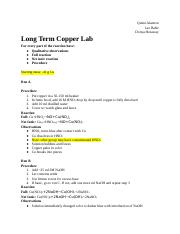 Long Term Lab.docx