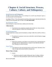 Chapter 4_Social Structure, Process, Culture, and Delinquency