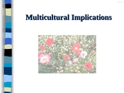 12. Multicultural Implications