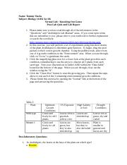 knockoutgenesWorkSheet (1).doc