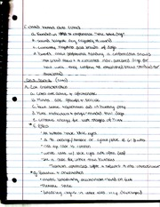 Cats Breeds Notes