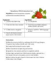 Strawberry DNA Extraction Lab Packet - Module 3 Strawberry ...