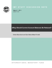 Should Current Account Balances Be Reduced.pdf