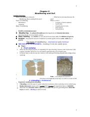 Lecture 6_Weathering.docx