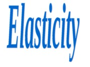 Ch. 4 Elasticity
